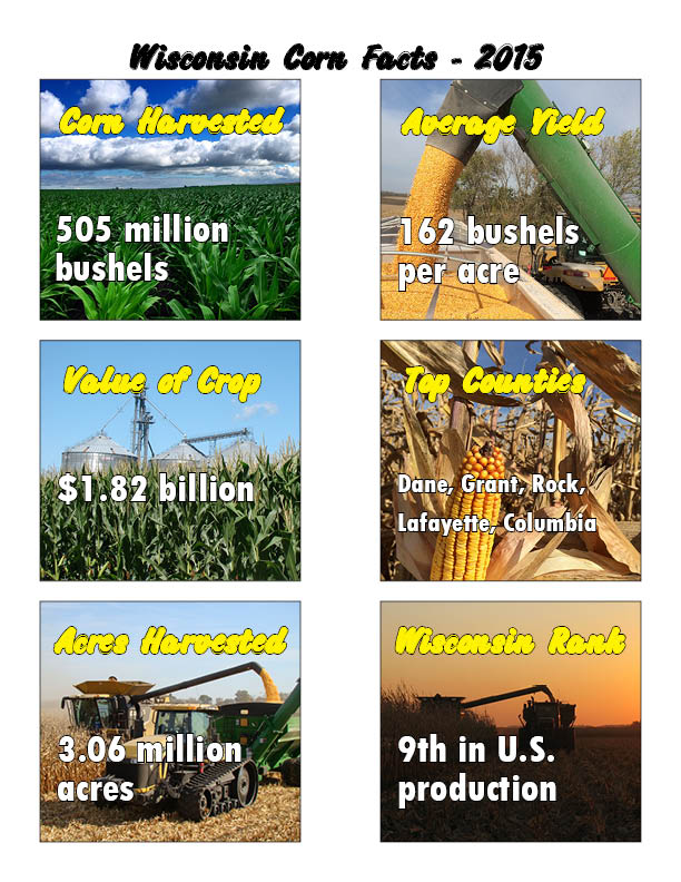 2015 WI corn facts